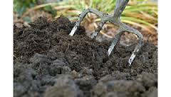 50% Soil + 50% Vermicast