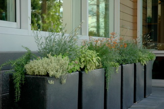 Garden Design with Starting your own garden using large containers Vermiculture and with Landscaping With Grasses