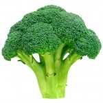 Broccoli_Green-1